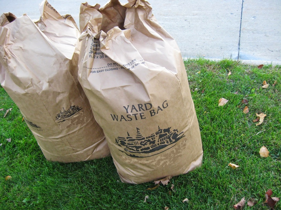 yard waste bag.jpg